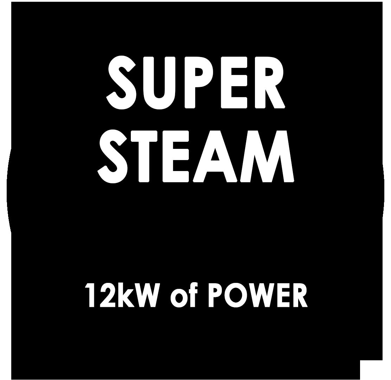 12kW Steam Generator